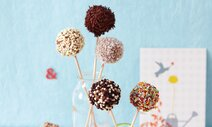 Cake Pops mit Paula-Pudding